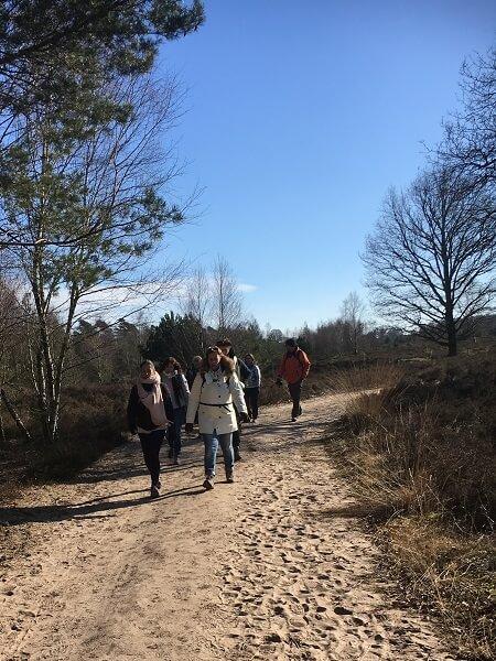 Funbreaks - Single Event - Wandeling Sallandse Heuvelrug